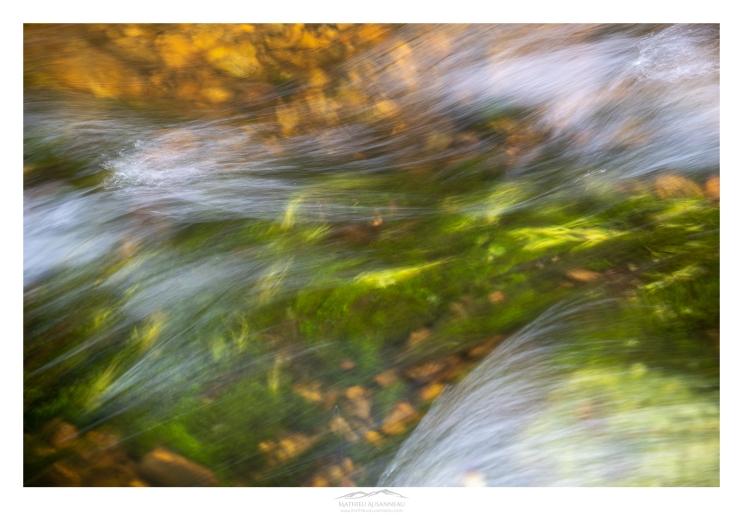 mathieu-ausanneau-ruisseau-01